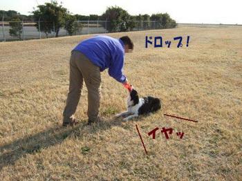 DSCF7705 のコピー.jpg