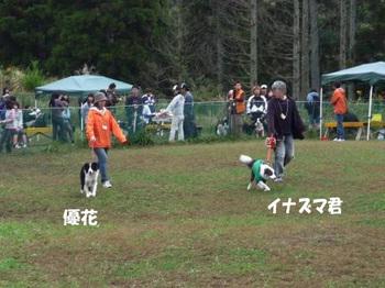 P1010832 のコピー.jpg