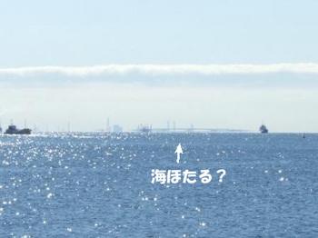 DSCF5870 のコピー.jpg